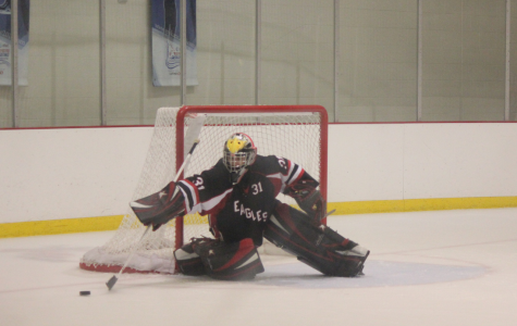 Hockey players debate professional avenues