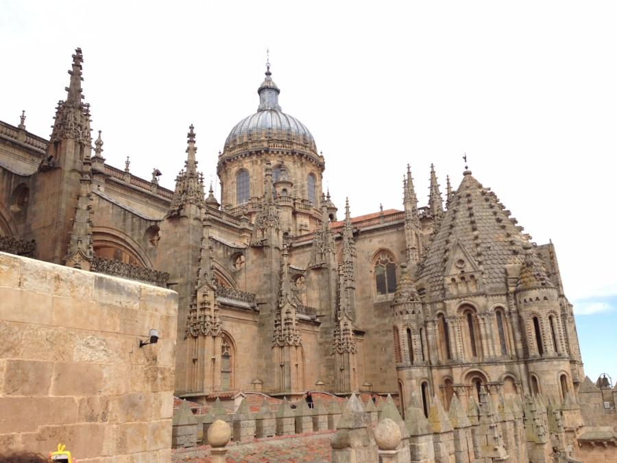 Photo contributed by Cameron Maleki  This cathedral, located in Salamanca, Spain, was constructed between the 16th and 18th centuries and can be seen by students on various study abroad trips.