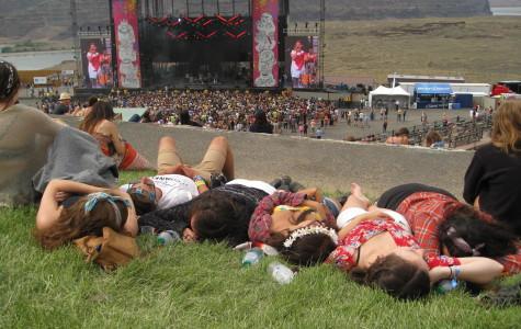 'Sasquatch!' festival draws myriad of interesting, drunk attendees