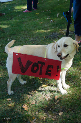 "A dog sports a ""Vote!"" sign at the People"