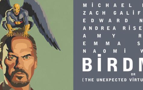 'Birdman' more than a cookie-cutter