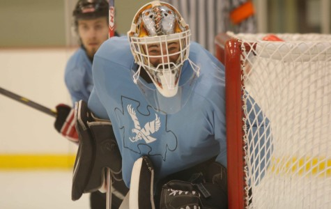 Blue in the Rink game raises funds for autism charity