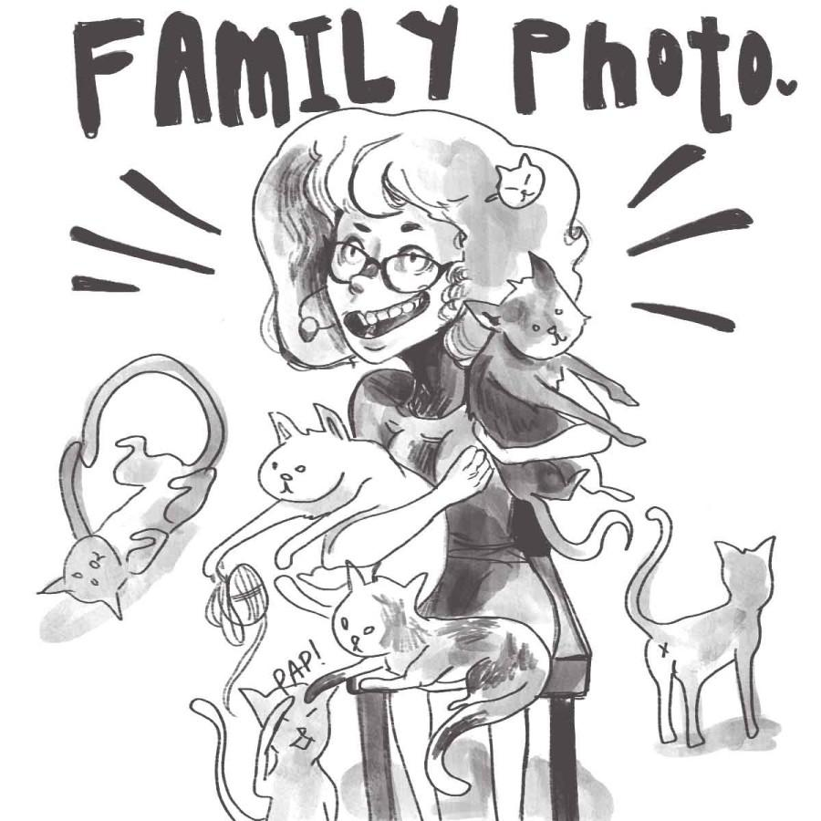 'Crazy cat lady' stereotype mass-produced