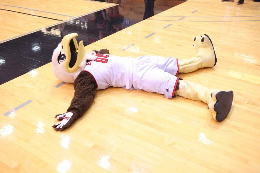 Swoop takes a moment to lament on the court floor.