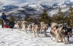 EPIC to attend Montana dogsledding sessions