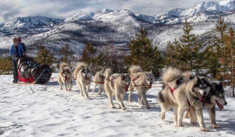 Featured Photos of Winter Quarter
