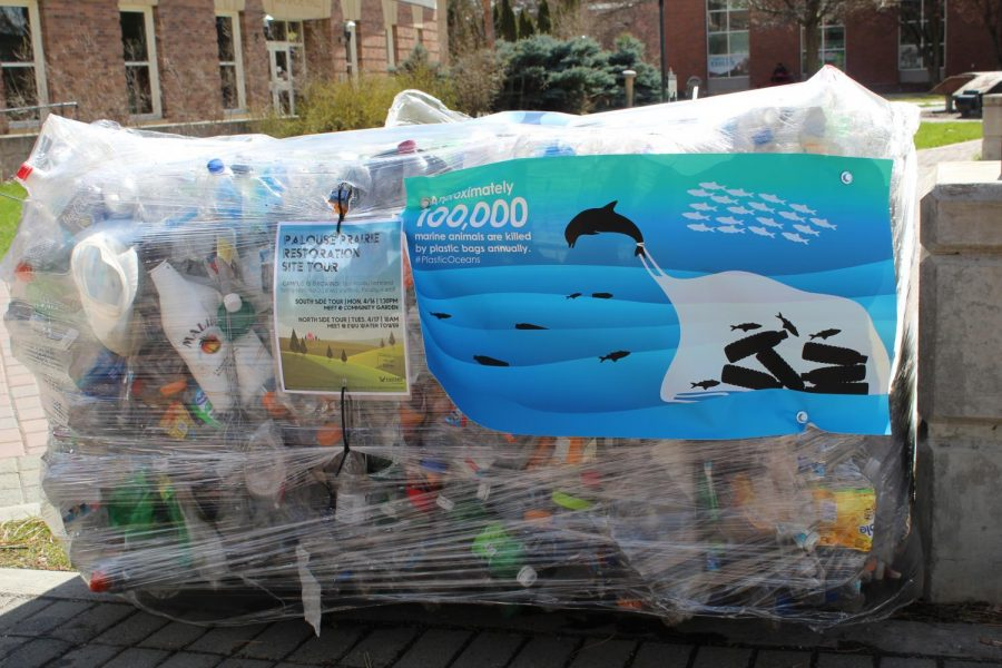A+pallet+of+recycled+plastic+%7C+Kelsey+Magnuson+for+The+Easterner