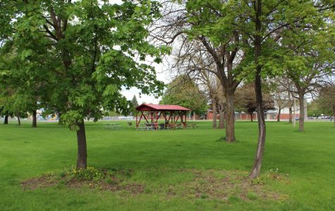 Disc golf course coming to Cheney