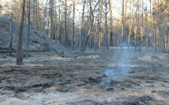 Mullinix Fire contained near Cheney