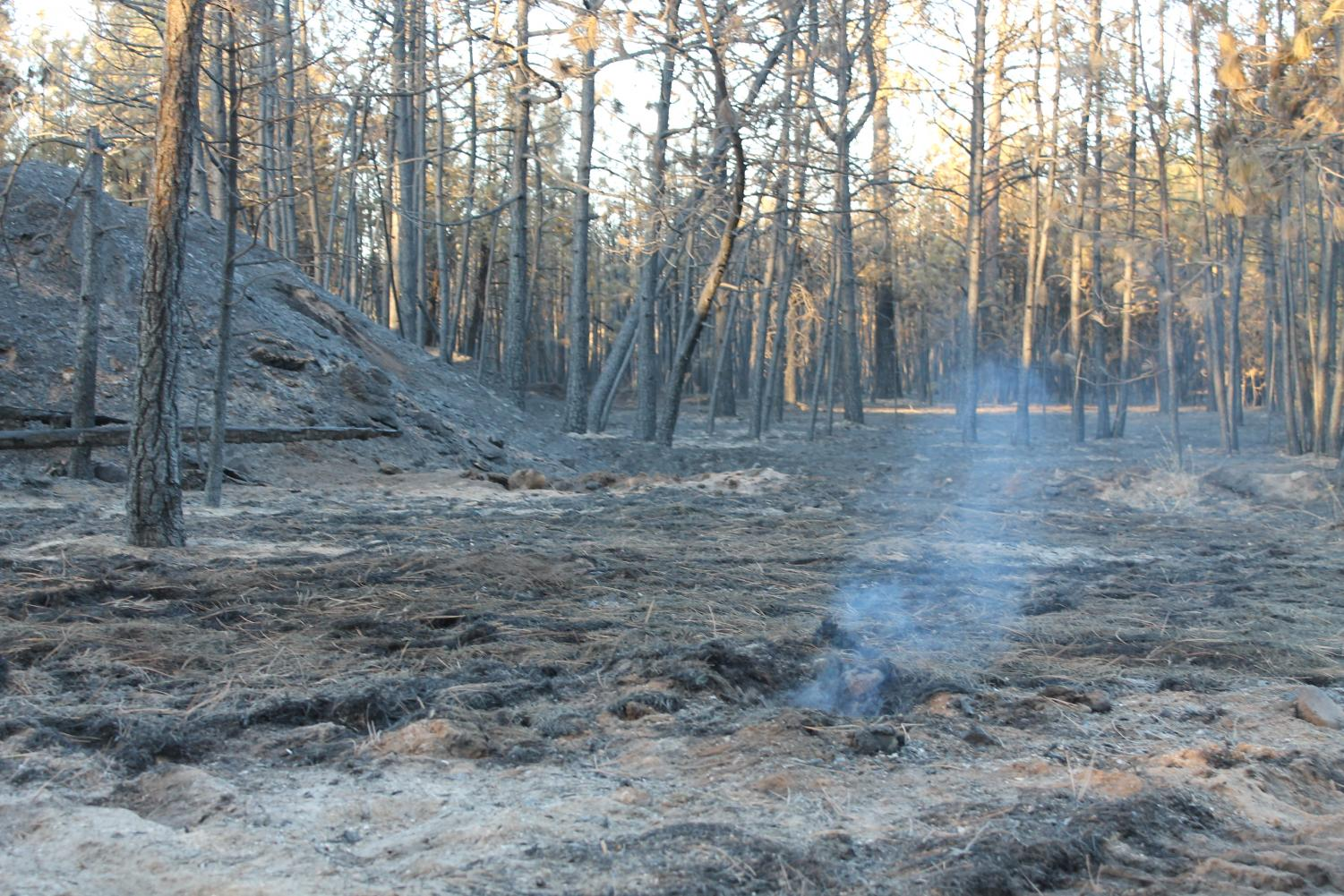 Smoke rises from the site of the Mullinix Fire near Cheney.